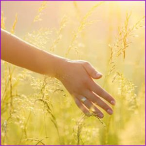 Life Coaching with Happiness Coach and Psychic Clairvoyant Heidi Wells, 020 8894 7343 or 0771 4257461